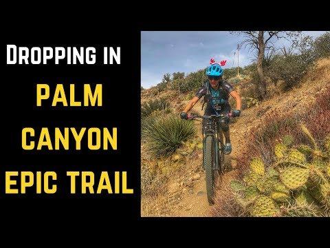 Dropping down the Palm Canyon Epic (Palm Springs/Palm Desert Area Mountain Biking)