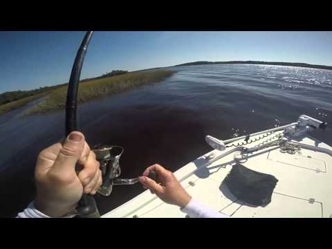 Redfish in Charleston SC Wando River with Raymond