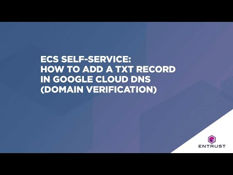 ECS Self-Service: How to add a TXT record in Google Cloud DNS (domain verification)