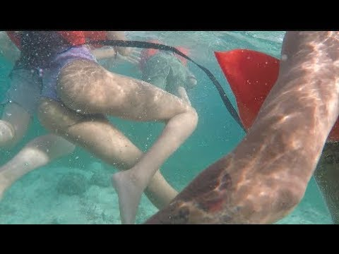 WENT SNORKELING WITH BAE?
