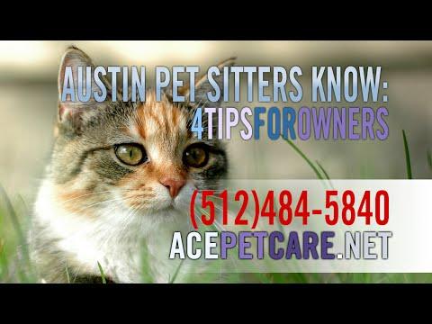 Austin Pet Sitter Shares 4 Tips | Ace Pet Care | 512-484-5840