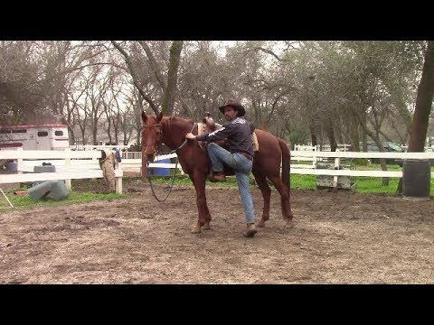 Video Tip, Mounting and Dismounting, Mike Hughes, Auburn California