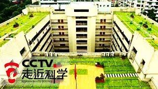 《走近科学》 20171122 海绵城市   CCTV科教