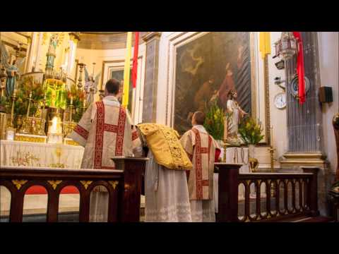 Lecture on the Liturgy Part 4: Mass of the Catechumens - From Sign of the Cross to the Gospel