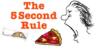 5 second rule : Is it true and does it really work? :  Five second rule : An Introduction