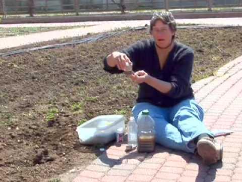 Home Testing of Soil: Using Test Strips