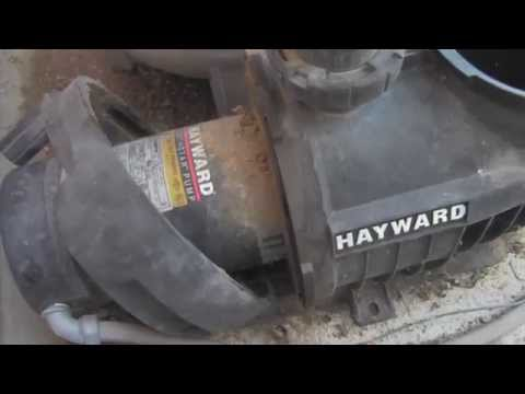 Hayward Northstar Pool Pump: Motor Removal and Impeller Inspection