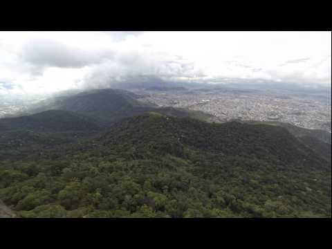 Tijuca rainforest & Rio de Janeiro