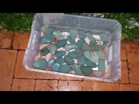 How to clean river rocks for your Aquarium