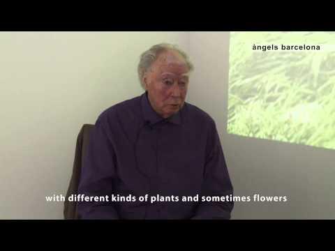 Michael Snow: Video Fields - àngels barcelona, 2015