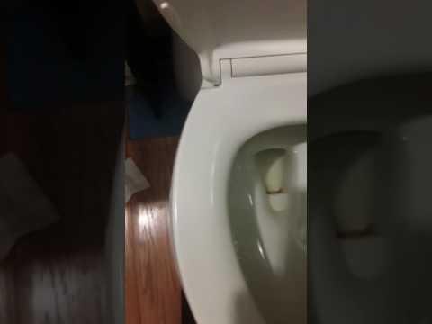 Toilet bowl water problem