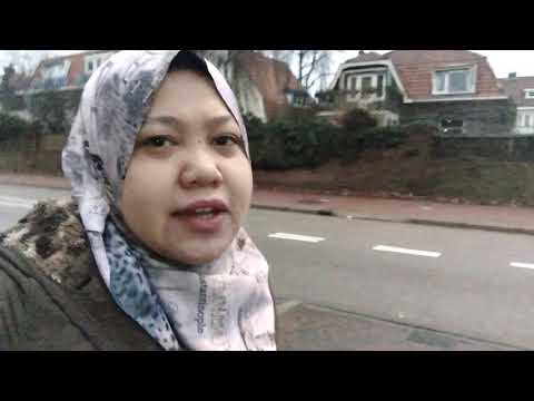 Walking to Zaanse Schans, Amsterdam