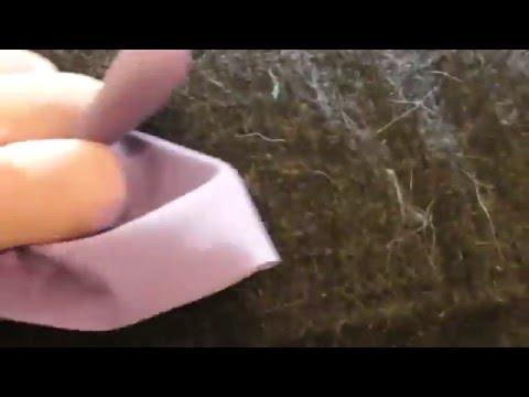 BEST WAY TO REMOVE CAT DOG LION TIGER COW PET HAIR FROM SOFA
