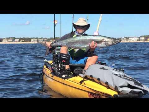 Kayak Fisherman Catches Three King Mackerel
