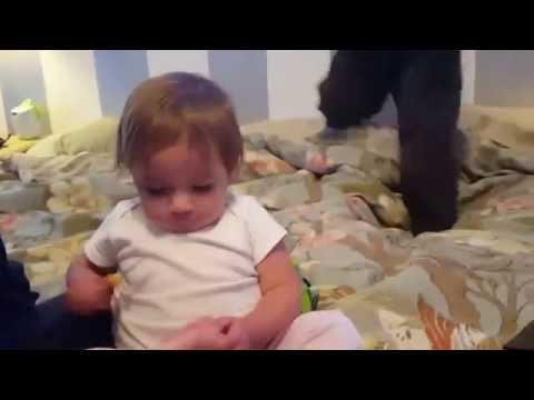 Funny Baby Cuts Toe Nails