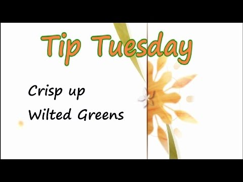 How to Crisp up Wilted Greens - Tip Tuesday