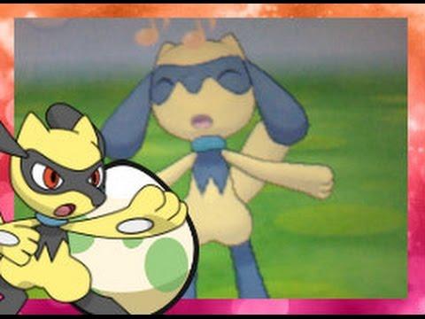 Live Hatch!!!! Shiny Riolu after 509 Eggs!! Pokemon X