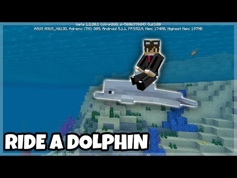 Minecraft PE: How to Ride a Dolphin (Tutorials)
