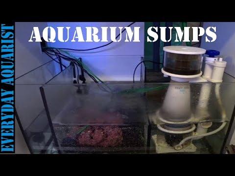 What are Aquarium Sumps Explained