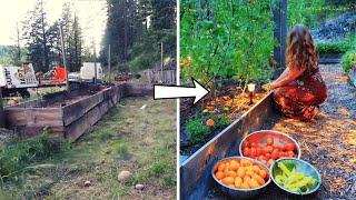 TIMELAPSE: Start to Finish Raised Bed Garden Build