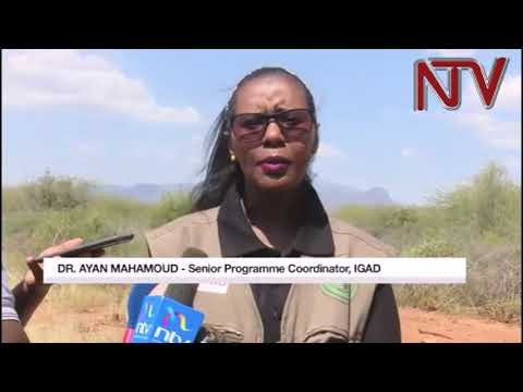 FIGHTING DROUGHT: Pastoralists in West Pokot seek solutions to fight weather vagaries