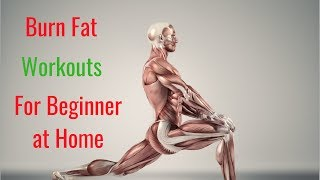 Burn Fat Workout for Beginner – Beginners' Workout at Home