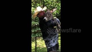 Ohio man cradles baby donkey in his arms while singing a lullaby