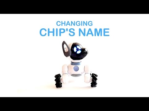 CHiP Tutorial 11: Re-Naming Your CHiP