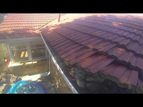 Possum - roof removal