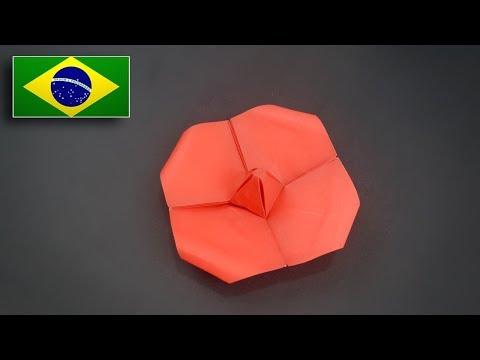 Origami: Flor de Papoula - Instruções em Português BR