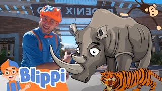 Blippi Visits The Zoo | Learning Zoo Animals For Kids | Educational Videos For Toddlers