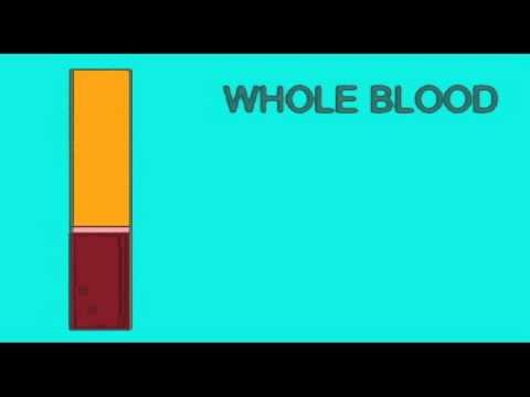 AP2 EXAM1: BLOOD: LOW HEMATOCRIT