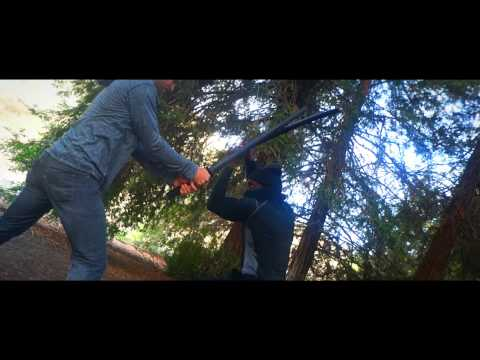 Redwoods Fight