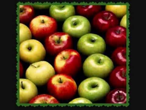 The Things an Apple Can Teach Us