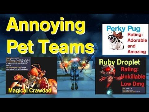 How to Make an Annoying Pet Battle Team