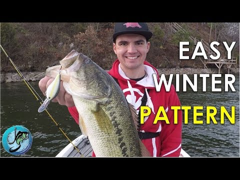 Easy Winter Bass Fishing Pattern to Catch Fish All Day Long