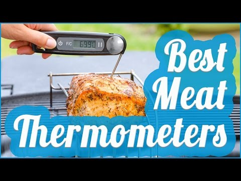 Best Meat Thermometer To Buy In 2017