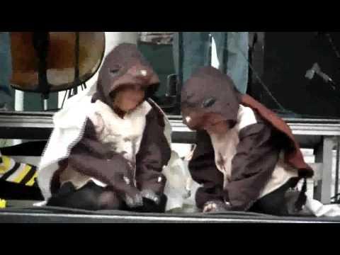 Sea Turtle Hatchlings Scene - NRC Opening - Part 8