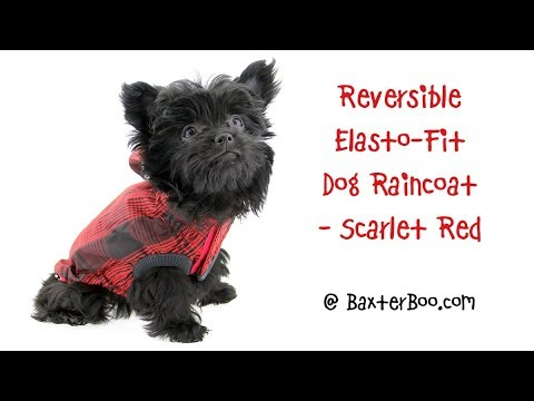 Reversible Elasto-Fit Dog Raincoat - Scarlet Red