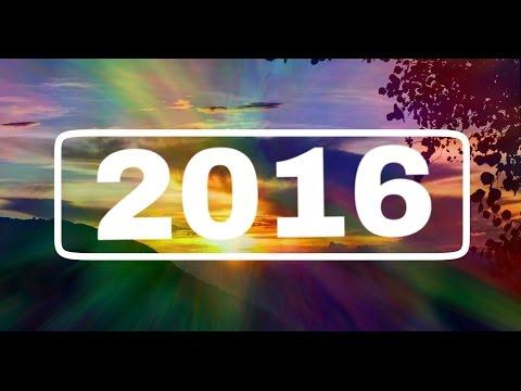 My Year 2016