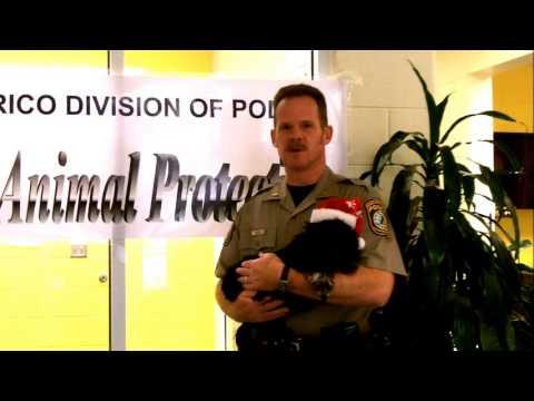 Henrico Animal Protection Holiday Message.wmv
