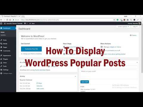 How to display WordPress Popular Posts: Beginners' Guide