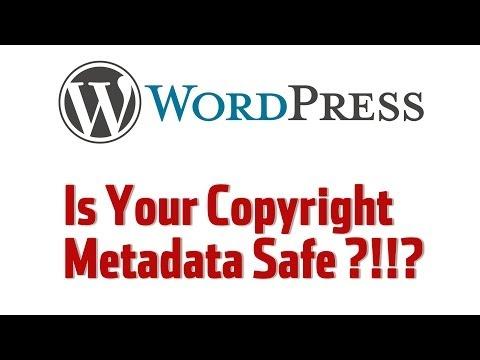 Wordpress WARNING - Copyright Metadata At Risk