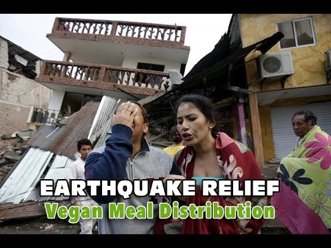 FFL Ecuador to Serve Vegan Meals to Earthquake Survivors