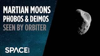 Martian Moons Phobos and Deimos Seen by Orbiter
