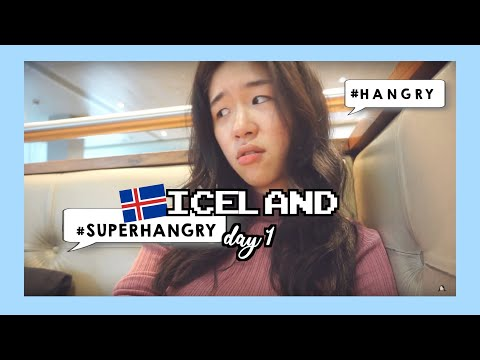 Travel Vlog  - Winter in Iceland 🇮🇸 (ep.1/6)