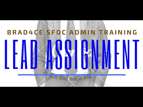 Salesforce: Basic Lead Assignment Rule