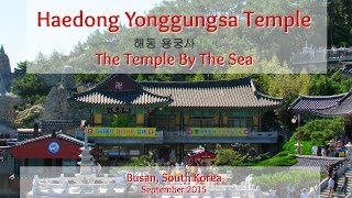 Download Haedong Yonggungsa Buddhist Temple - The Temple By The Sea | Busan South Korea | 해동 용궁사 Video
