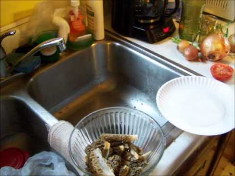 How To Clean And Prepare Morel Mushrooms