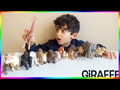 Best Way to Learn Farm and Wild Animals Names with Toys for Children
